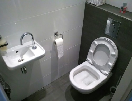 Renovatie toilet
